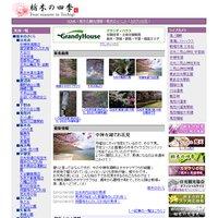 日光・那須 栃木のさくら(桜)開花情報